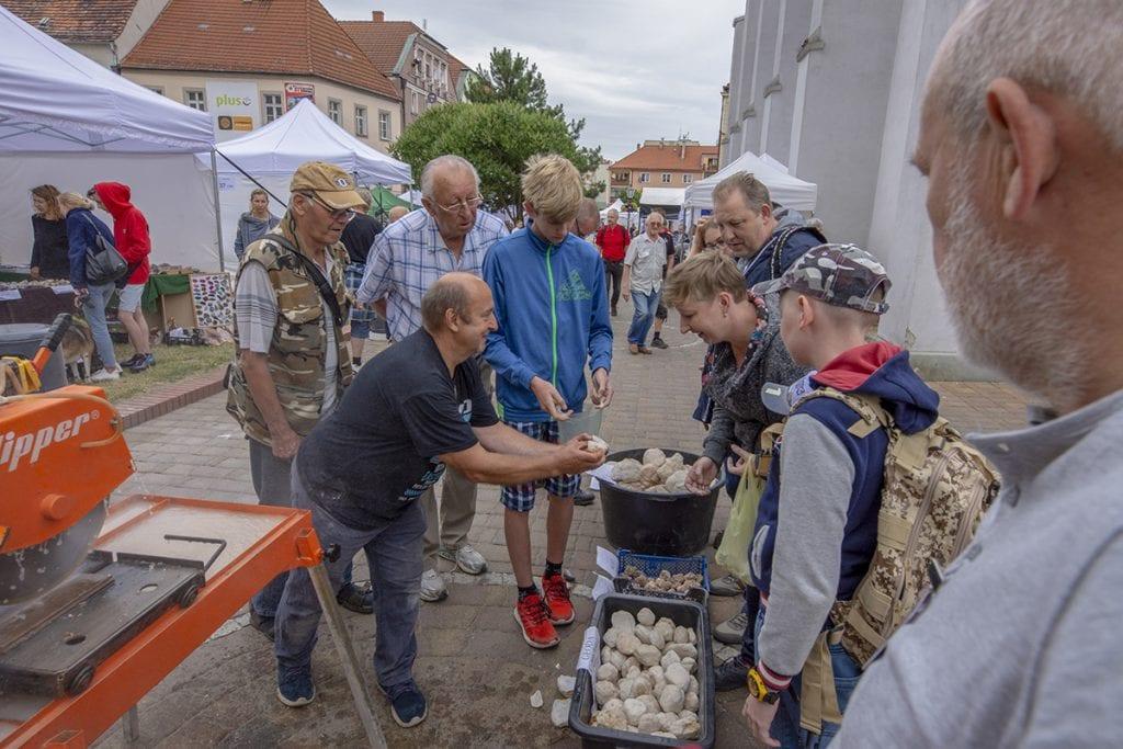 Zdjecia Sudecki Festiwal Minerałów
