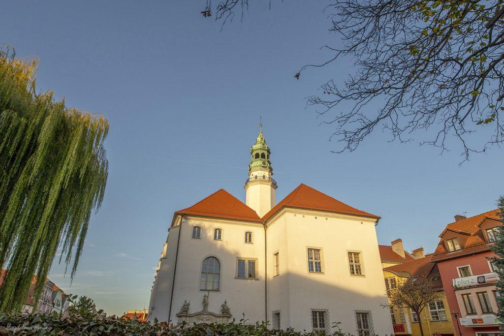 Fotograf Lubań