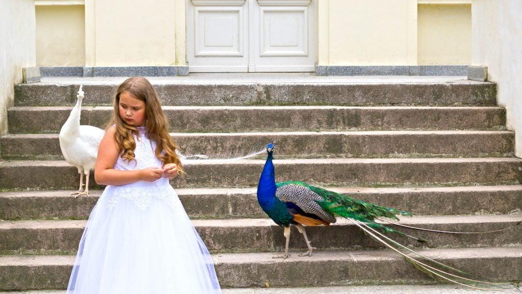 Fotograf na komunię Szczecin